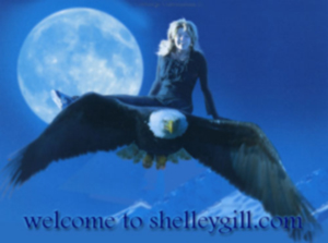 shelleygill.com header